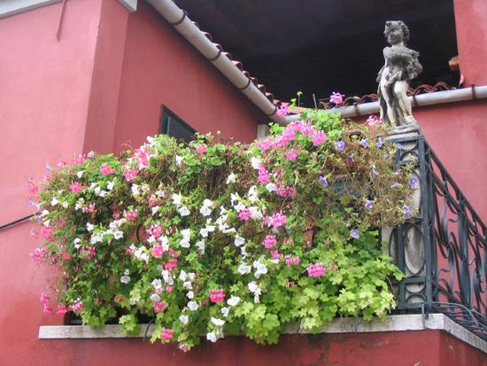 Garten in Venedig 8