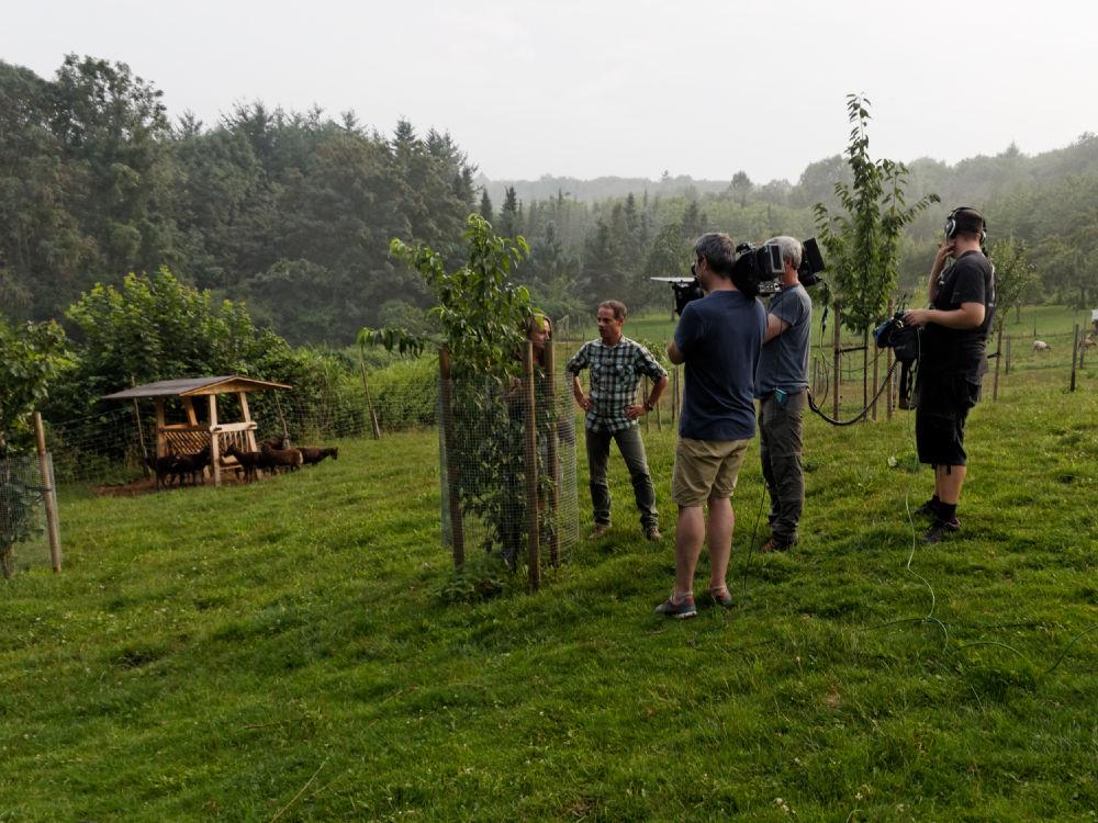 Markus Phlippen - Haus und Garten bei Nina und Thomas